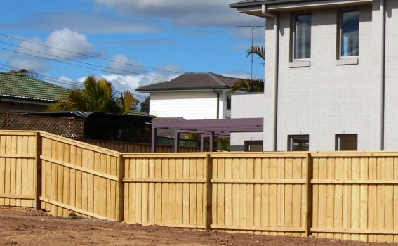 Timber Pool Fencing Treated Pine Pool Safe Fence